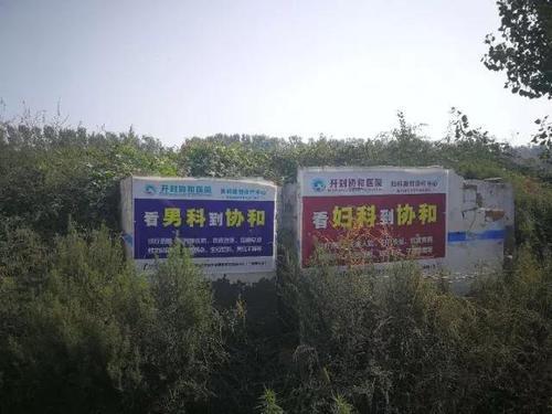 4-4 图为记者近日在河南开封拍摄。新华社记者 乌梦达 摄